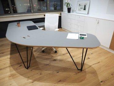 Büroumbau Wien Chefbüro